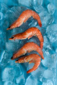 Row of shrimp on ice.