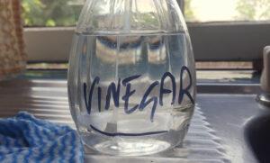 Vinegar spray.